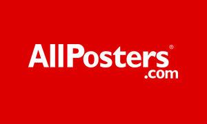 Интернет- магазин AllPosters