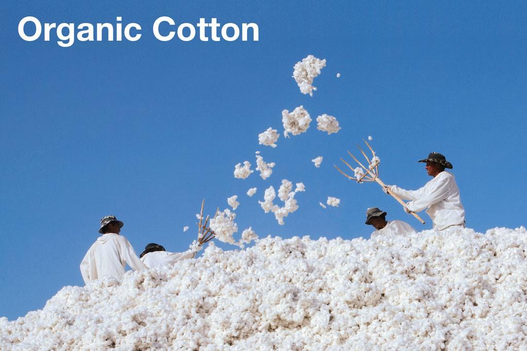 organic-cotton-muji