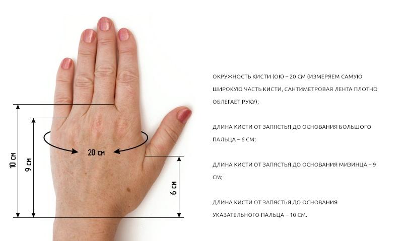 Схема основных параметров при снятии мерок руки
